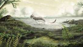 Scottish fossils tell story of first life on land | Geology | Scoop.it
