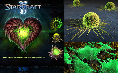 What StarCraft Can Teach Gamers About Fighting Cancer | UX-UI-Wearable-Tech for Enhanced Human | Scoop.it