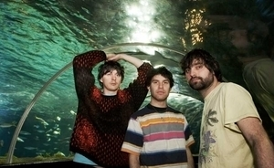 Animal Collective: 'We wrote our new album as a rock band' | WNMC Music | Scoop.it