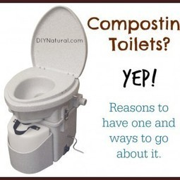 Composting Toilet - The How and Why of Doing It Yourself | Transición | Scoop.it