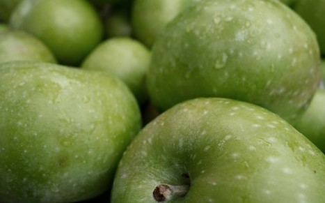 GFS/Tim Benton mention: Grub's up as fruit and veg push food inflation higher | BIOSCIENCE NEWS | Scoop.it