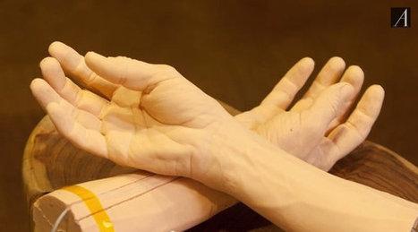 Voici pourquoi Google fabrique de la peau humaine | Inside Google | Scoop.it