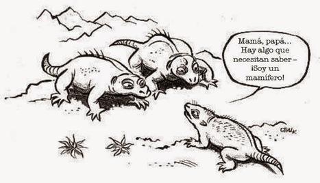 10 malentendidos comunes sobre Evolución...
