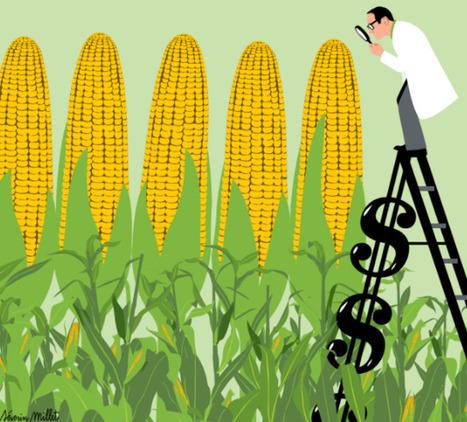 La recherche sur les OGM est minée par les conflits d'intérêts | Think outside the Box | Scoop.it