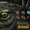 3D og Animasjon