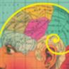 Neuropsych