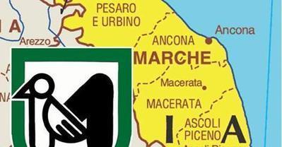 Buone notizie dalla regione Marche: continua il sostegno al commercio equo e solidale. | Equo solidale e sociale | Scoop.it