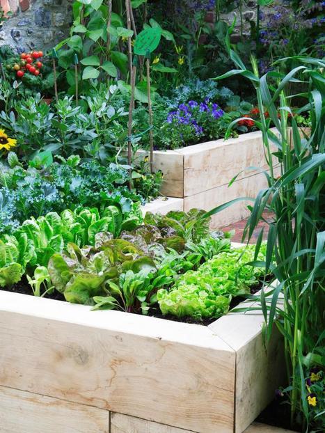 Raised Veggie Garden   ideas verdes   Scoop.it