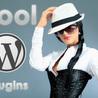 Top WordPress Plugins To Reach The Top!