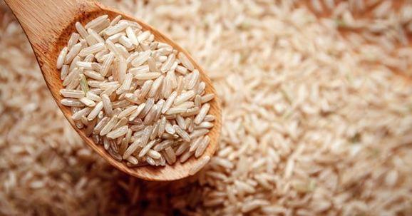 Agriculture : Le riz prend de plus en plus de place au Maroc - Infomédiaire