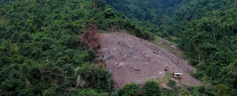Humans have destroyed 10% of Earth's wilderness in just 25 years | Embodied Zeitgeist | Scoop.it