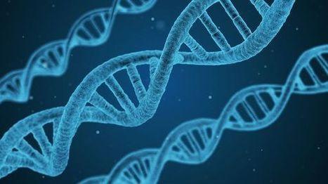 (Audio) Ingénierie génomique : jusqu'où manipuler le vivant ? | Vous avez dit Innovation ? | Scoop.it