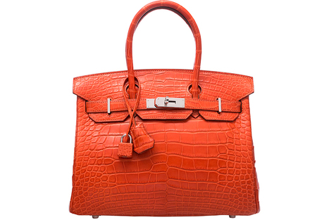 8558d321b555 crococodile bag  in The Birkin Bag