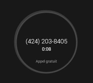 Hangouts - Organisez des conf calls gratuitement et invitez des personnes non Google à l'audio - Cloud34 | Numérique & pédagogie | Scoop.it
