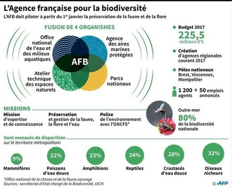 Trois questions autour de l'Agence française pour la biodiversité | Biodiversité | Scoop.it