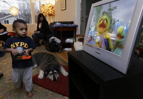 Study:  Certain Television Fare Can Help Ease Aggression in Young Children, (encourages empathy) | Odd Studies | Scoop.it