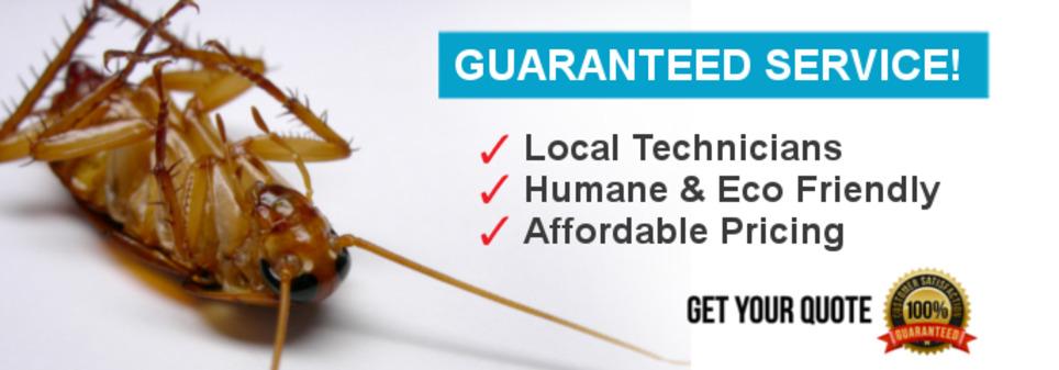 ارقام شركات مكافحة الحشرات بجدة | اكثر الخدمات المنزلية طلبا - شركة الافضل | Scoop.it