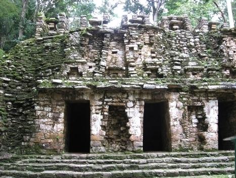 Moss-covered ruins at Yaxchilan  Photo by Hari Jagannathan Balasubramanian | Modern Ruins | Scoop.it