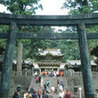 Shintoism!
