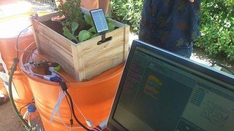 Una escola d'educació especial controla el seu hort per ordinador | Escola i Educació 2.0 | Scoop.it