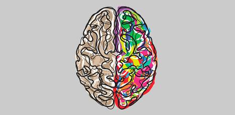 Inteligencia: ¿heredada o aprendida? | Bichos en Clase | Scoop.it