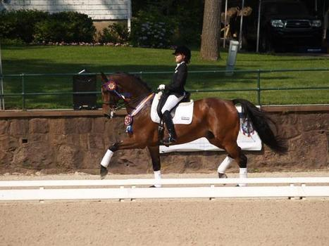 Big News: Nike Sponsors a US Dressage Rider | Fran Jurga: Equestrian Sport News | Scoop.it