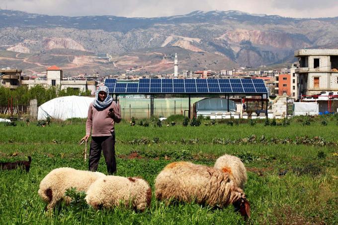 Privé de dollars, le Liban pourrait se tourner vers une agriculture plus naturelle