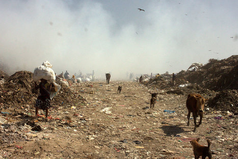 Delhi's dilemma: What to do with its tonnes of waste? | IB GEOGRAPHY URBAN ENVIRONMENTS LANCASTER | Scoop.it