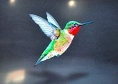 Humming Bird- Google's New Search Update Formula | Search Indus Updates | Scoop.it