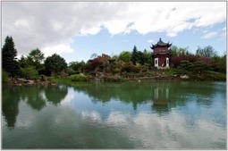 En visitant un jardind'Orient | The Blog's Revue by OlivierSC | Scoop.it
