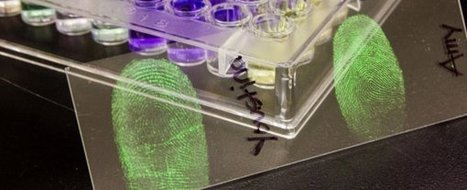 World's first cyber-plants fuse electronics with roses | leapmind | Scoop.it