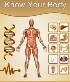 4 Useful iPad Apps to Help Students Learn about The Human Body | m-learning (UkrEl11) | Scoop.it