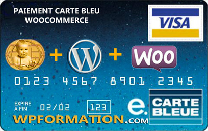 Paiement CB WooCommerce | Ecommerce WordPress | WordPress France | Scoop.it