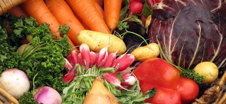 Idée reçue : les végétariens manquent de protéines. Les incroyables ... - Notre-Planete.Info | Végétarisme, alternative alimentaire | Scoop.it