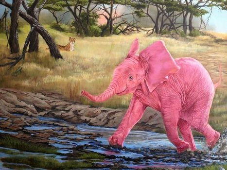How to Paint... Planning | Wildlife Art by: Laura Curtin | Good News for Artists | Scoop.it