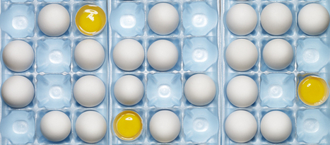 Should You Stop Ordering Egg Whites? | Health and Nutrition | Scoop.it