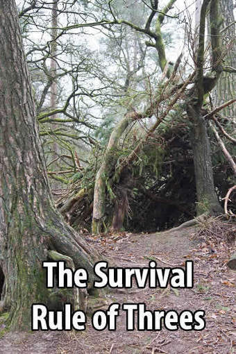 The Survival Rule Of Threes | Urban Survival Site | BOB to BOL by BOV | Scoop.it