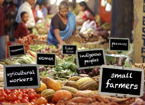 Women Rising 29: Food Sovereignty in Indigenous Communities   Sustainability: Permaculture, Organic Gardening & Farming, Homesteading, Tools & Implements   Scoop.it