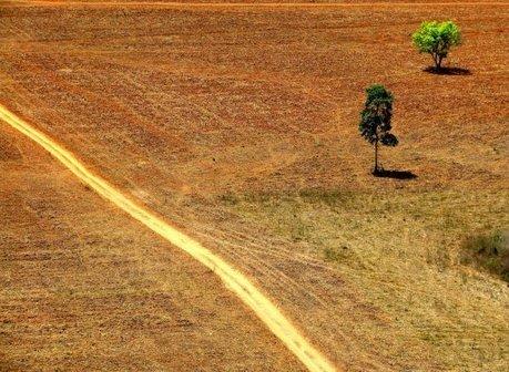 Comment la finance « verte » détruit l'Amazonie | Alternativas - Tecnologías - Reflexion - Opiniones - Economia | Scoop.it