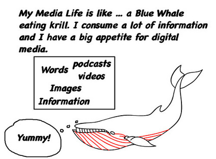 Their/Our Media Lives | Educational Leadership and Technology | Scoop.it