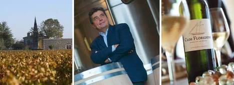 Q&A: Denis Dubourdieu, Bordeaux Oenologist | Vitabella Wine Daily Gossip | Scoop.it