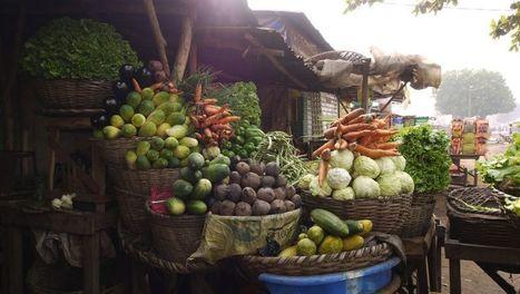 BENIN: Le bonheur est dans l'assiette ! | Veille Scientifique Agroalimentaire - Agronomie | Le Bonheur aujourd'hui | Scoop.it
