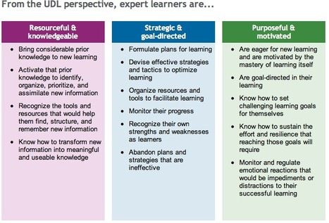UDL and Expert Learners | National Center On Universal Design for Learning | Personalize Learning (#plearnchat) | Scoop.it
