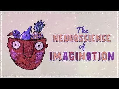 The neuroscience of imagination - Andrey Vyshedskiy | Scriveners' Trappings | Scoop.it