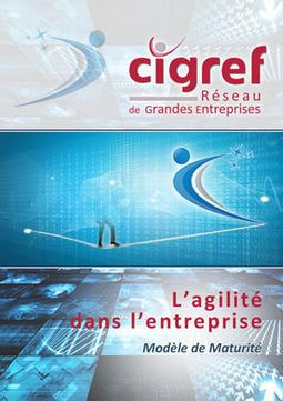 Rapport CIGREF « Agilité dans l'entreprise, modèle de maturité » – CIGREF | Complémentarité Qualité et Contrôle Interne | Scoop.it