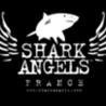 Actualités de Shark Angels France