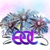 Music - Experience - Electric Daisy Carnival Chicago - Presented by Insomniac Events | Electronic Dance Music (EDM) | Scoop.it