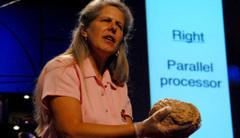 12 talks on understanding the brain | neuroscience in special education | Scoop.it