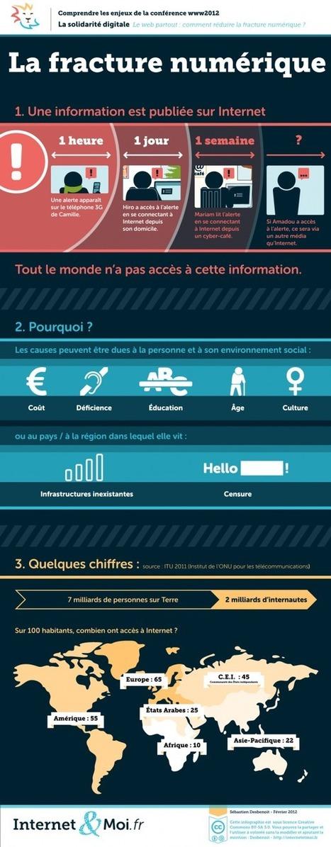 La fracture numérique, raisons et chiffres en infographie | Time to Learn | Scoop.it
