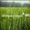 Organic SEO bulletin board